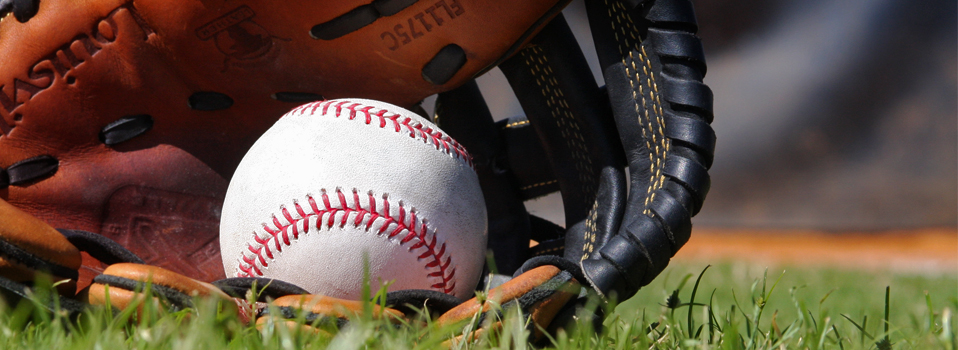 which baseball stores have the best deals on baseball gear